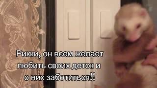 сдвижная розетка монтаж